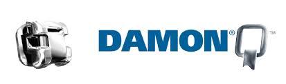 Damon Q 1